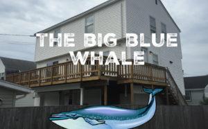 The Big Blue Whale